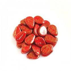Lístky sasanky (Anemone...